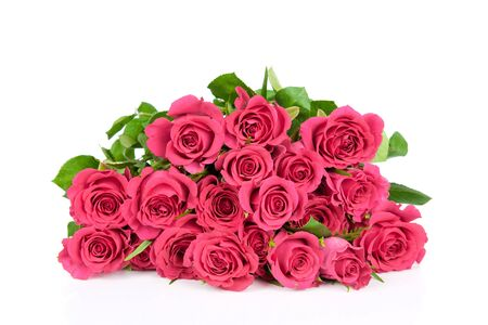 Pink roses isolated on white Stock Photo - 17928520