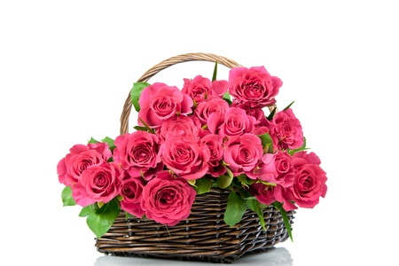 Roses in the basket isolated on white background photo