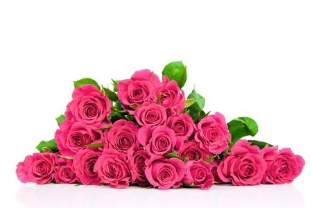 ramos de flores: Las rosas rosadas aisladas en blanco