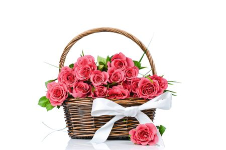 Roses in the basket with bow isolated on white background photo
