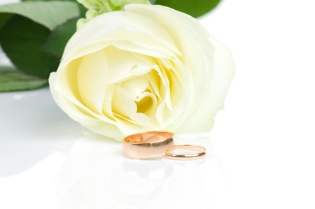 White rose and two golden wedding rings photo