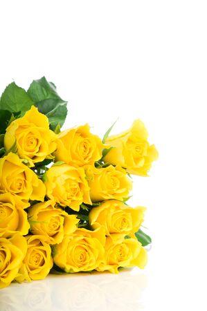 rosas amarillas: Rosa amarilla aislada en el fondo blanco Foto de archivo