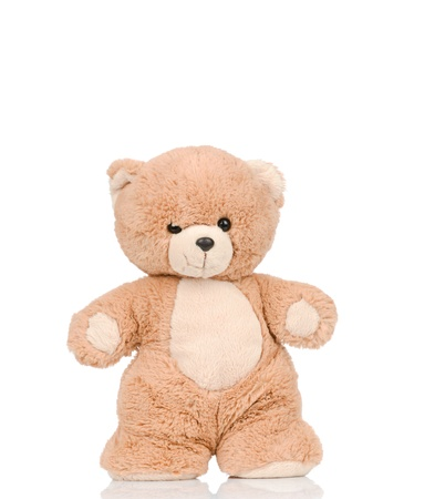 Teddy bear on white background photo