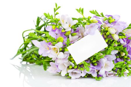 Lilac freesia photo