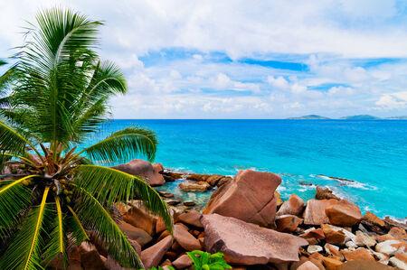 Tropical beach  The Seychelles photo