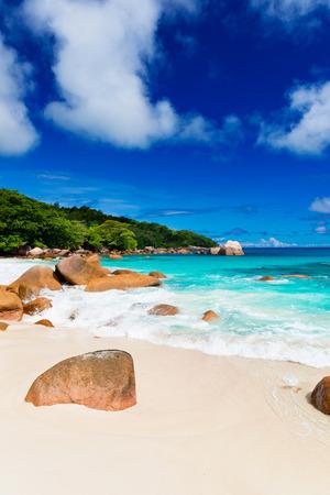 tropical plant: Granite rocks on the beach, the Seychelles Stock Photo