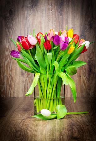 tulipan: Mieszanka kwiatów tulipanów