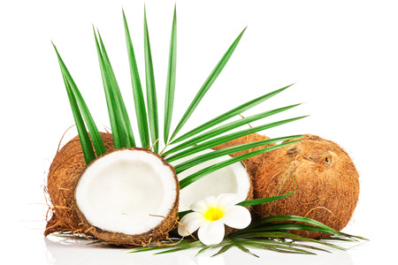 noix de coco: Coconut with green leaf