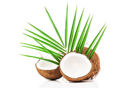 fresh leaf: Coconut with green leaves on white background