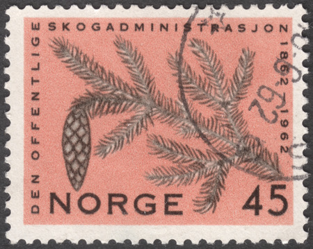stempeln: MOSCOW, RUSSIA - JANUARY, 2016: a post stamp printed in NORWAY shows a pine branch, the series The 100th anniversary of the National Forest Administration, circa 1962