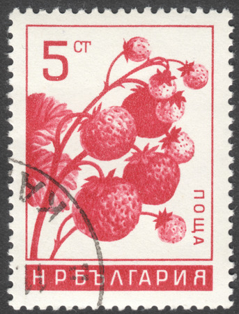 postage: MOSCOW, RUSSIA - CIRCA JANUARY, 2016: a post stamp printed in BULGARIA shows berries Fragaria ananassa, the series Fruit, circa 1965 Editorial