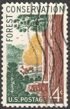 forest conservation: MOSCOW, RUSSIA - JANUARY, 2016: a post stamp printed in the USA shows aoods and animals, Forest Conservation Issue, circa 1958