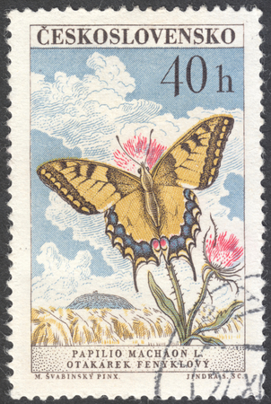 machaon: MOSCOW, RUSSIA - CIRCA JANUARY, 2016: a post stamp printed in CZECHOSLOVAKIA shows a butterfly with the inscription Papilio machaon, the series Butterflies and Moths, circa 1961