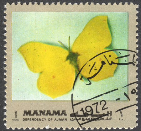 gonepteryx rhamni: MOSCOW, RUSSIA - CIRCA FEBRUARY, 2016: a post stamp printed in Ajman shows a butterfly Gonepteryx rhamni, the series Butterflies, circa 1972