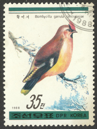 MOSCOW, RUSSIA - CIRCA APRIL, 2016: a post stamp printed in the NORTH KOREA shows a bird Bombycilla garrulus centralasiae, the series Birds, circa 1988
