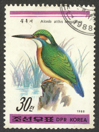 alcedo: MOSCOW, RUSSIA - CIRCA APRIL, 2016: a post stamp printed in the NORTH KOREA shows a bird Alcedo atthis bengalensis, the series Birds, circa 1988