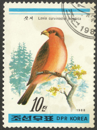 postmail: MOSCOW, RUSSIA - CIRCA APRIL, 2016: a post stamp printed in the NORTH KOREA shows a bird Loxia curvirostra japonica, the series Birds, circa 1988