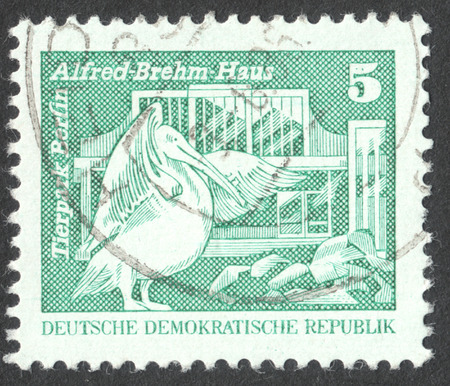 ddr: MOSCOW, RUSSIA - CIRCA APRIL, 2016: a post stamp printed in DDR shows Alfred-Brehm-Building; Berlin Zoo - Rosy Pelican, the series Construction in the DDR, circa 1973 Editorial