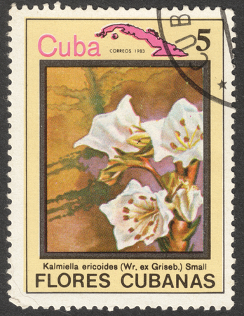 timbre: MOSCOW, RUSSIA - CIRCA MAY, 2016: a post stamp printed in CUBA shows Kalmiella ericoides flower, the series Flora and Fauna - Flowers, circa 1983