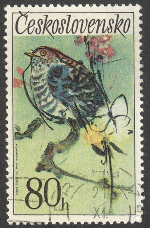 canorus: MOSCOW, RUSSIA - CIRCA MAY, 2016: a post stamp printed in CZECHOSLOVAKIA  shows a Cuckoo bird, the series Songbirds, circa 1972 Editorial