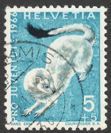 """MOSKWA, Rosja - OKOŁO lipca 2016: znaczek pocztowy drukowane w Szwajcarii pokazuje erminel (Mustela erminea), z serii """"Pro Juventute - Wild Animals"""", około 1966 Publikacyjne"""