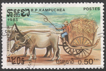 curved leg: MOSCOW, RUSSIA - CIRCA AUGUST, 2016: a stamp printed in CAMBODIA  shows a Buffalos draw cart, the series The National holiday, circa 1985