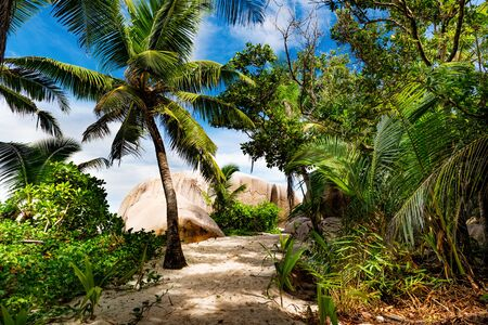 Amazing tropical beach Stock Photo