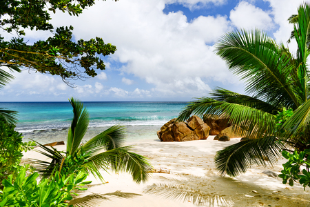 Amazing tropical beach Reklamní fotografie