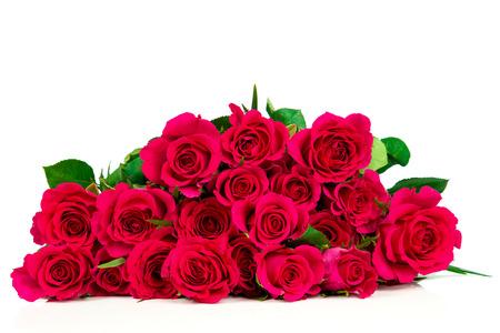 Roses isolated on white background Stock Photo