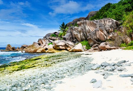 praslin: Photo of a thopical beach on the sunny day Stock Photo
