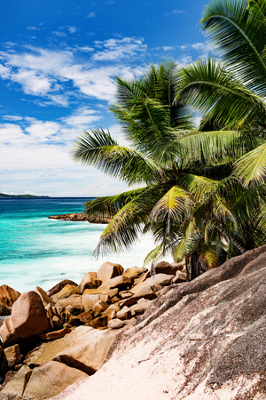 Photo of a tropical beach on the sunny day Stock Photo