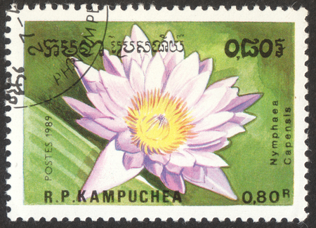 MOSCOW, RUSSIA - CIRCA OCTOBER, 2017: a post stamp printed in CAMBODIA shows a flower Nymphaea Capensis, the series Flowers, circa 1989 Editorial