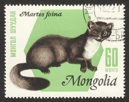 MOSCOW RUSSIA - CIRCA OCTOBER 2017: a post stamp printed in MONGOLIA shows Stone Marten (Martes foina), the series The Pels animals, circa 1966