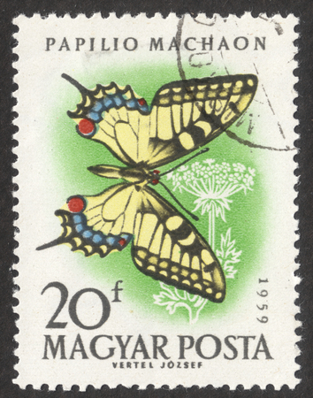 MOSCOW RUSSIA - CIRCA NOVEMBER 2017: a post stamp printed in HUNGARY shows Swallowtail (Papilio machaon) butterfly, the series The butterflies, circa 1959