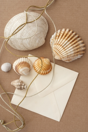 Shells and letter photo