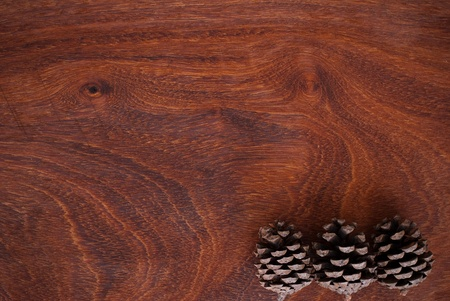 pine cone on wooden background photo