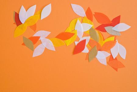 petal: petal design Stock Photo
