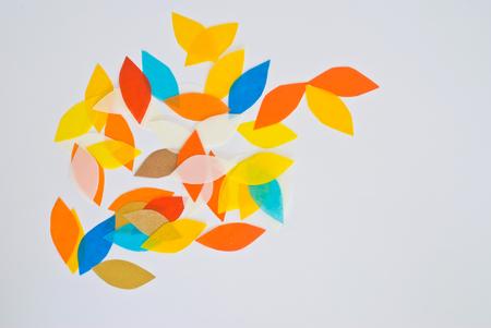 petal design photo