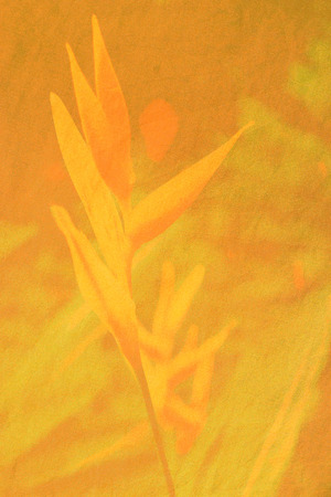 linen texture: exotic flower print on linen texture Stock Photo