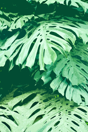 infirm: jungle colors - close up of a green leaves