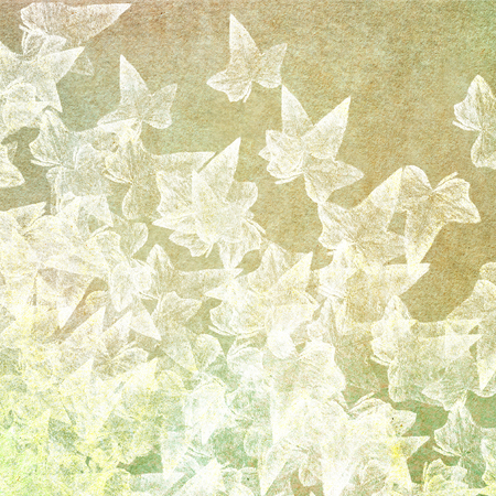 folliage: white leaves on light green paper background - floral background