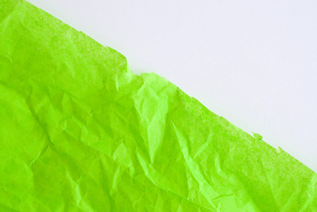 green paper surface - natural greenery - color trend 2017