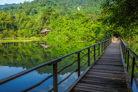 everglades national park: Wooden bridge in national park of Thailand