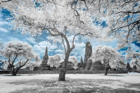 Ruined ancient Buddhist temple and pagoda in Ayutthaya historical park, Thailand in infrared photography
