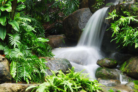 Beautiful waterfall in the garden photo