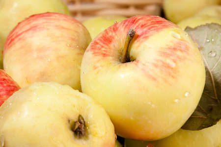 ripe custard-apples background dominated by yellow and pink color