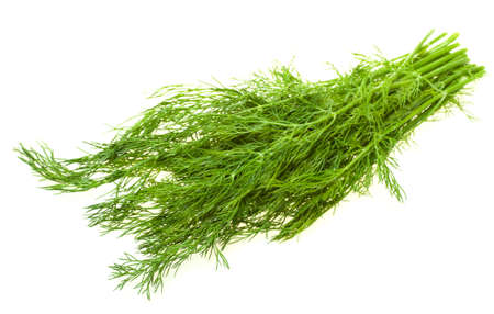 Green dill is a natural complement to almost any salad. Small bunch of dill is against white background with selective focus on its upper front part.  Stock Photo