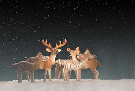Small deer and reindeer cookies in the snow on a black background. Low Key Photography for Christmas time 版權商用圖片
