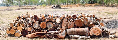 Timber on farm