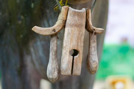 wooden cow bell in thailand